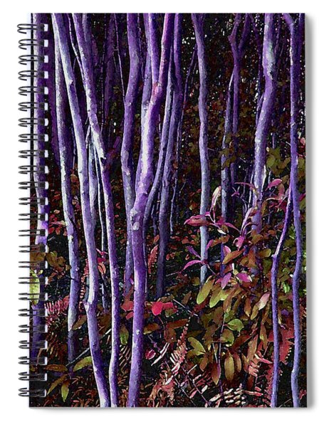 Thick Rough Spiral Notebook
