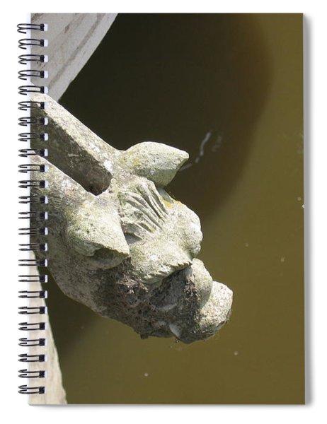 Thirsty Gargoyle Spiral Notebook