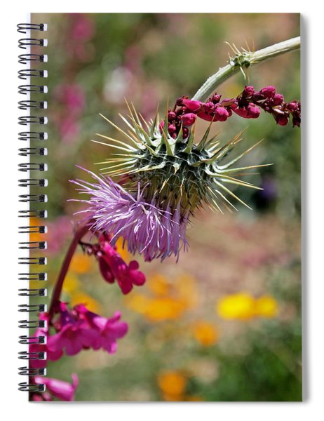 Thistle And Penstemon Spiral Notebook