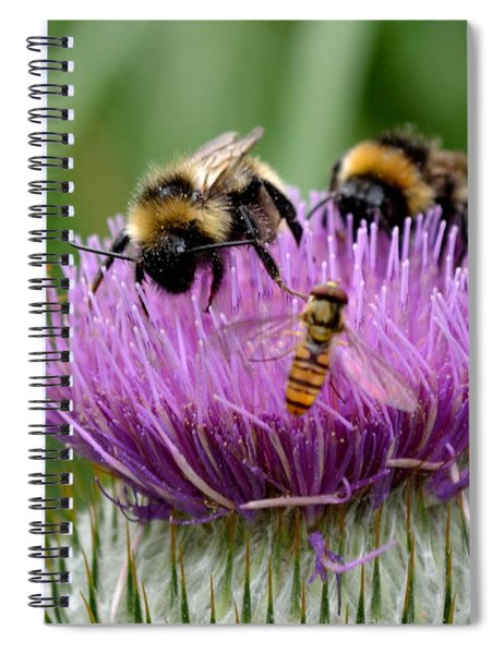Spiral Notebook featuring the photograph Thistle Wars by Scott Lyons
