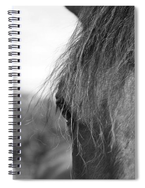 Thoroughbred B/w Spiral Notebook