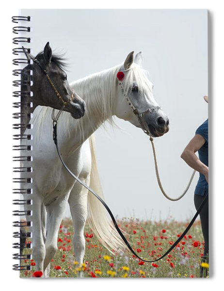 Three At The Poppies' Field... 1 Spiral Notebook