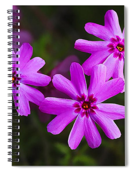 Three In The Pink Spiral Notebook