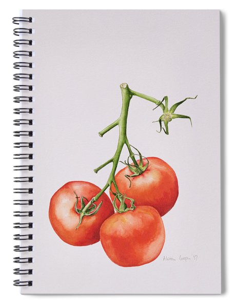 Three Tomatoes On The Vine Spiral Notebook