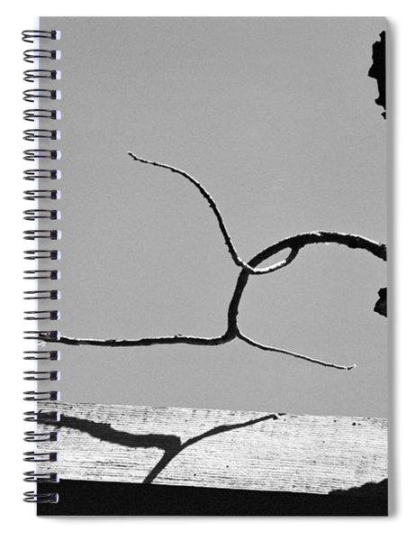 Through A Broken Barn Roof Spiral Notebook