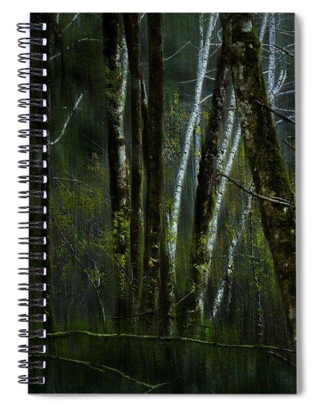 Through A Glass . . . Darkly Spiral Notebook
