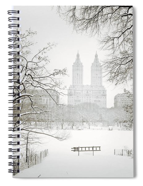 Through Winter Trees - Central Park - New York City Spiral Notebook
