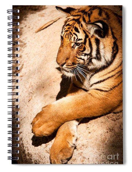 Tiger Resting Spiral Notebook