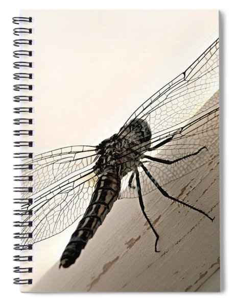 Tiny Magnificence  Spiral Notebook
