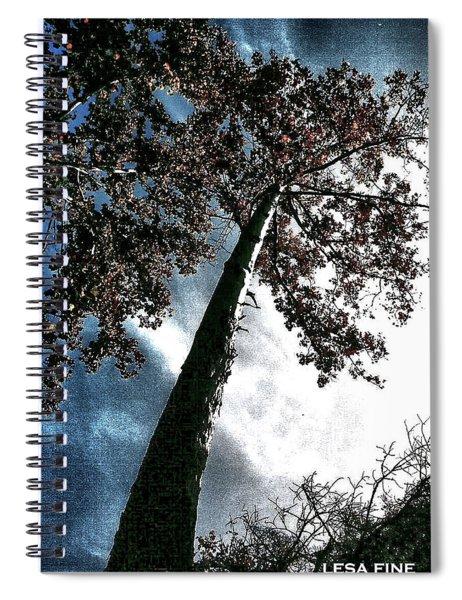 Tippy Top Tree II Art Spiral Notebook