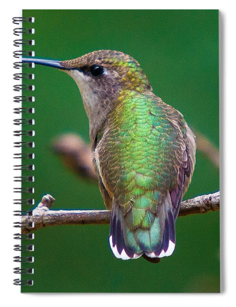 Spiral Notebook featuring the photograph To The Left - To The Left by Robert L Jackson