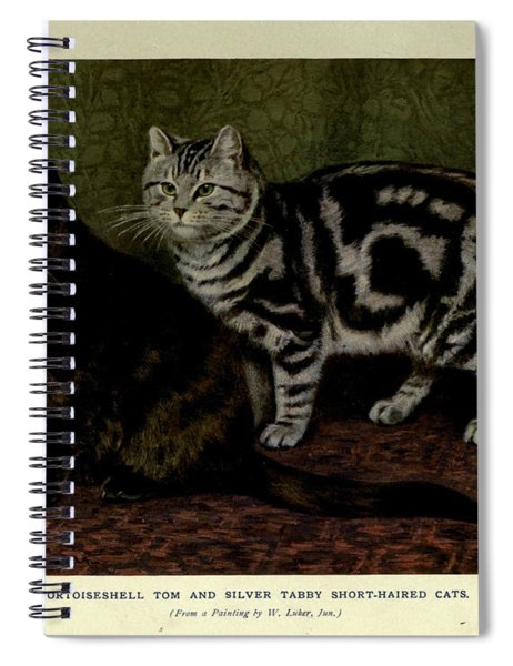 Tortoiseshell Tom And Silver Tabby Cats Spiral Notebook