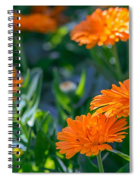 Spiral Notebook featuring the photograph Touch By Light by Garvin Hunter