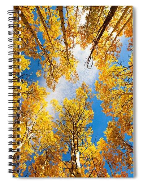 Towering Aspens Spiral Notebook