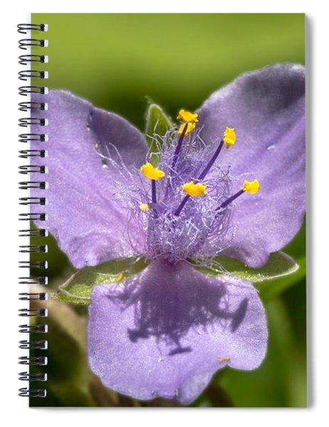 Tradescantia Virginiana Spiral Notebook