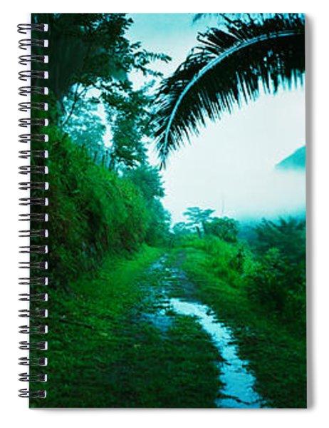 Trail Through A Rainforest, Cayo Spiral Notebook