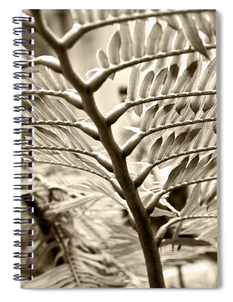 Translucidity Spiral Notebook