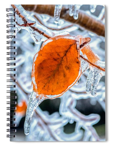 Spiral Notebook featuring the photograph Trapped by Garvin Hunter