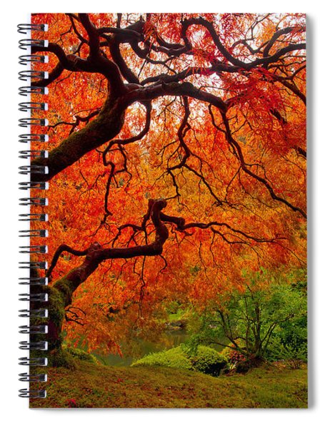 Tree Fire Spiral Notebook