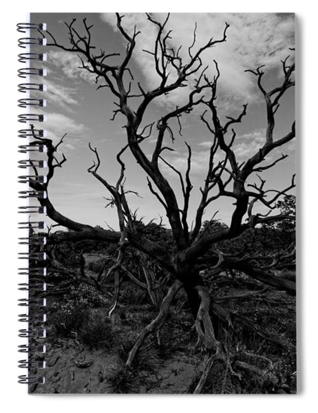 Tree Of The Dead Spiral Notebook