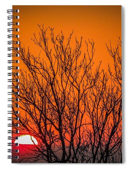Tree Silhouetted By Irish Sunrise Spiral Notebook