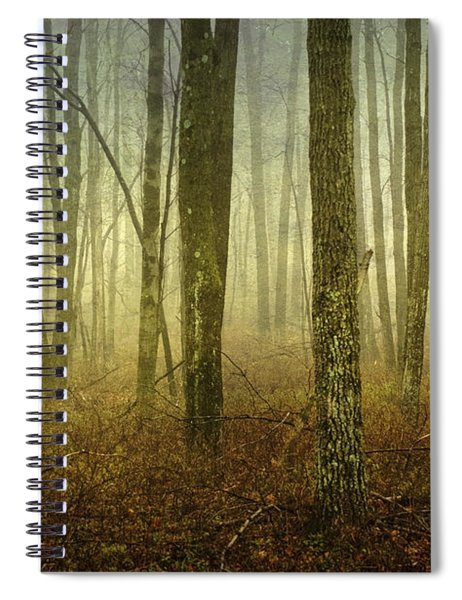 Trees II Spiral Notebook