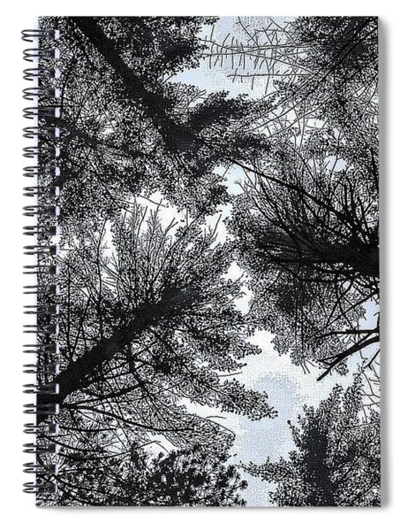 Trees In Winter Spiral Notebook