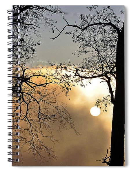 Trees On Misty Morning Spiral Notebook