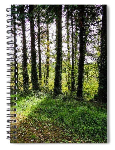 Trees On The Shannon Estuary Spiral Notebook