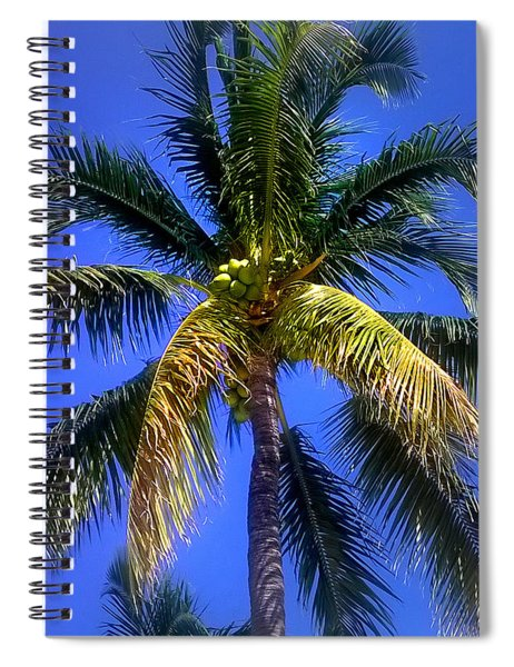Tropical Palm Trees 8 Spiral Notebook