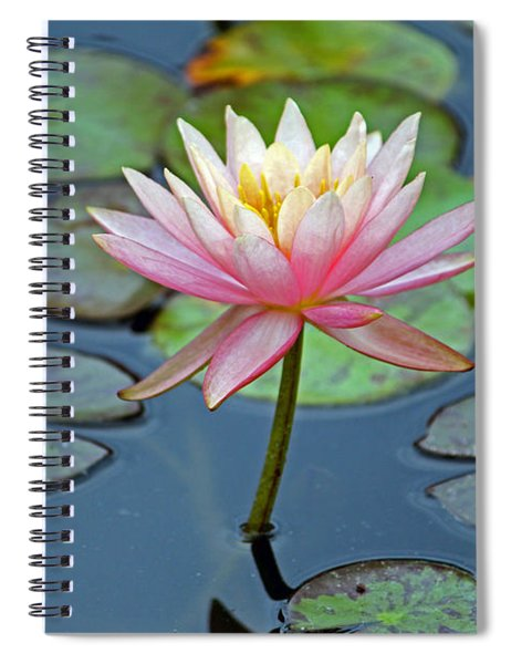 Tropical Pink Lily Spiral Notebook