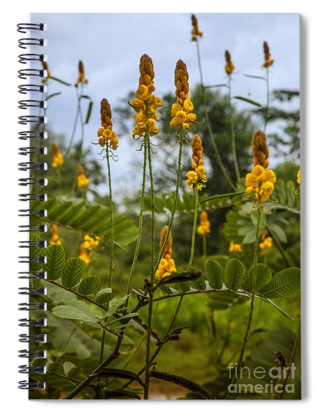 Tropical Plants Spiral Notebook