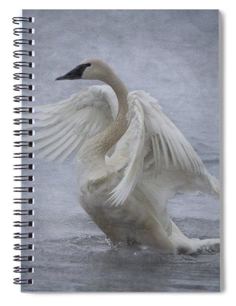 Trumpeter Swan - Misty Display Spiral Notebook