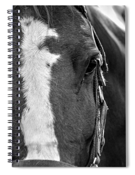 Trustworthy 03 Bw Spiral Notebook