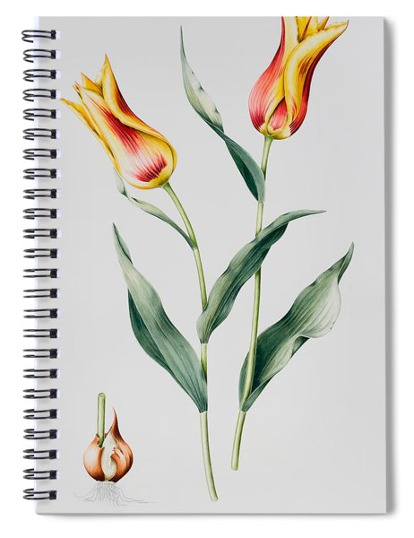 Tulip Mona Lisa Spiral Notebook