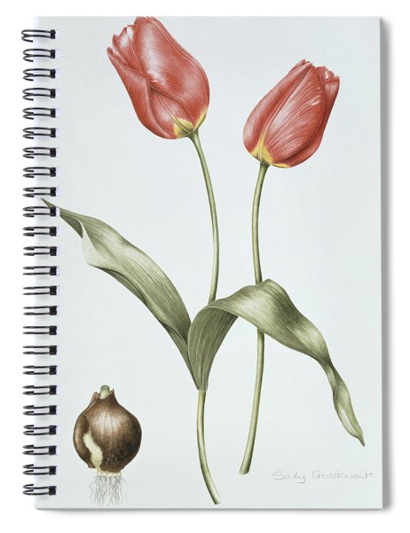 Tulip Red Darwin Spiral Notebook