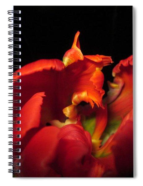 Tulipmelancholy Spiral Notebook