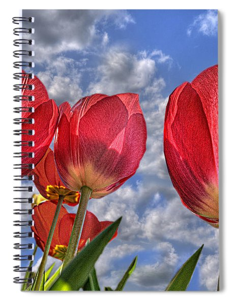Tulips Are Better Than One Spiral Notebook