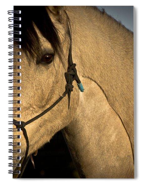 Tupelo 2 Spiral Notebook
