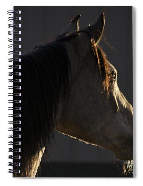 Tupelo Spiral Notebook
