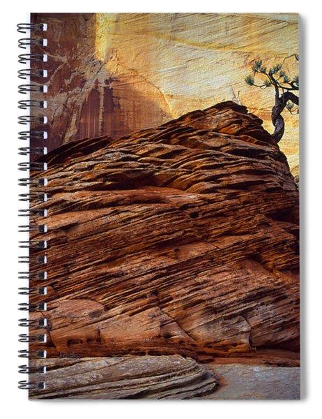 Twisted Juniper Spiral Notebook