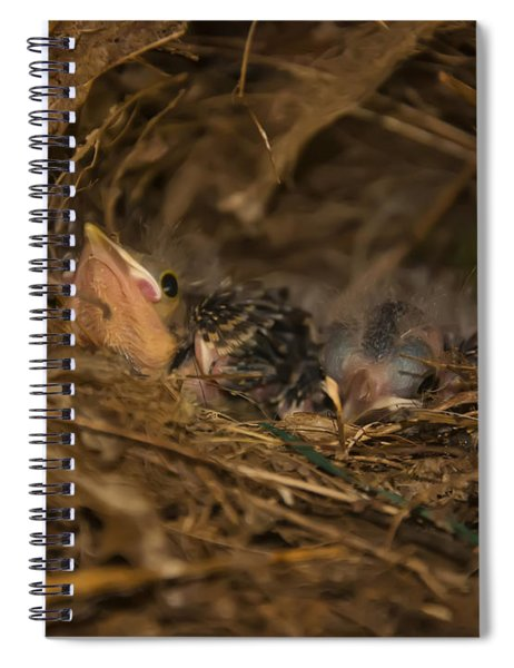 Two Baby Sparrows In A Nest Spiral Notebook