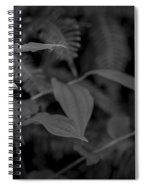 Two Buds Spiral Notebook
