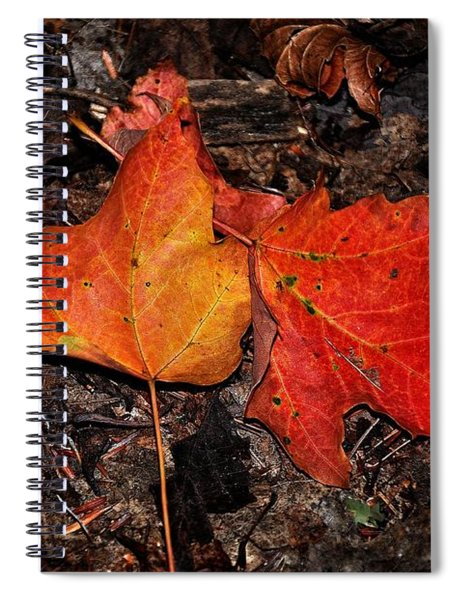 Two Fallen Autumn Leaves Spiral Notebook