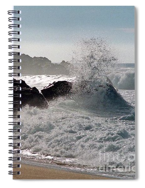 Two Gulls Spiral Notebook