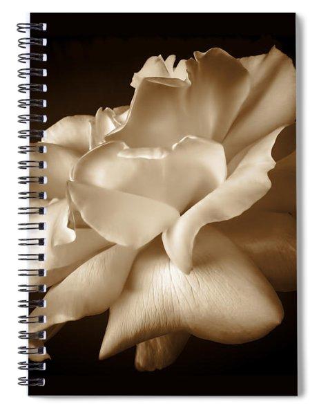 Umber Rose Floral Petals Spiral Notebook