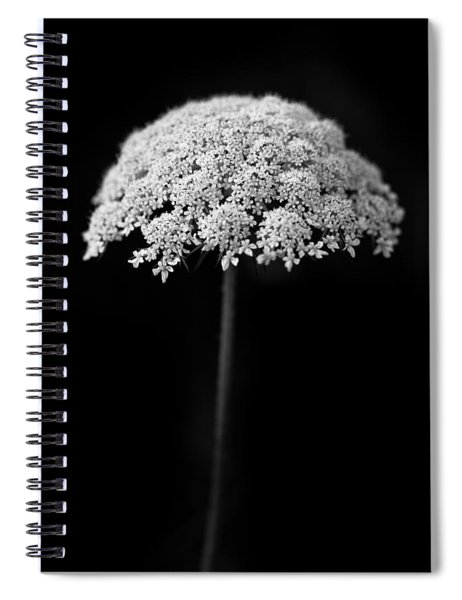 Umbrella Light Spiral Notebook