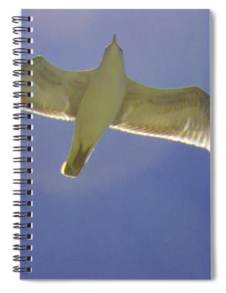 Under His Wings IIi Spiral Notebook