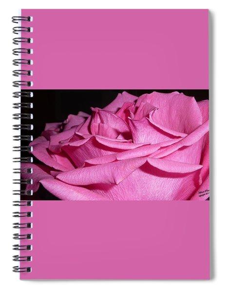 Understanding Peace Spiral Notebook