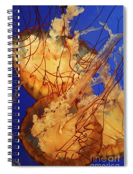 Underwater Friends - Jelly Fish By Diana Sainz Spiral Notebook